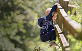 Картинка лето, забор, мальчик, ребёнок
