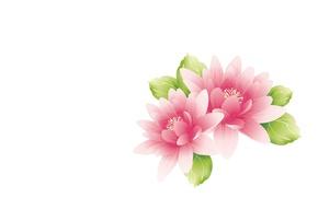 Картинка цветы, арт, лотос