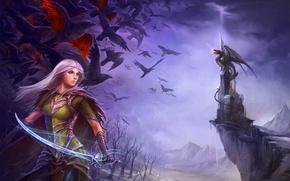 Картинка the nightmares of winter, иллюстрация к книге, оружие, замок, дракон, птицы, девушка, меч, эльфийка, сабля, ...