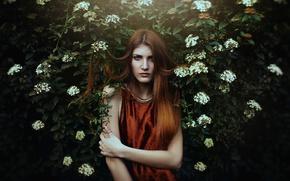 Картинка взгляд, девушка, лицо, волосы, платье, кусты