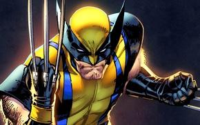 Картинка Wolverine, супергерой, marvel, росомаха, Marvel Heroes, коллекционная карточка steam