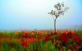 Картинка colorful, autumn, tree, blur, single, selective, painterly