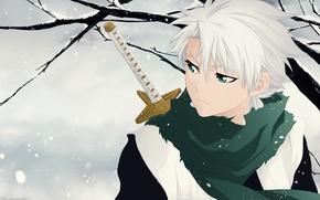 Картинка wallpaper, sword, game, Bleach, green eyes, anime, chibi, Snow, snow, katana, man, boy, ken, captain, …
