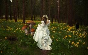 Картинка девушка, природа, грибы