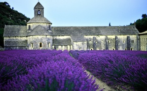 Картинка поле, Франция, церковь, лаванда