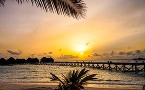 Обои пальмы, корабль, пирс, берег, ветки, Мальдивы, песок, море, бунгало, горизонт, тропики, закат
