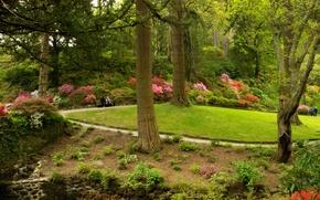 Картинка зелень, трава, деревья, скамейка, парк, Великобритания, кусты, Bodnant Gardens Wales