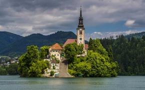 Картинка лес, деревья, горы, озеро, остров, дома, лестница, церковь, Словения, Bled