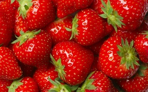 Обои ягоды, макро, много, клубника, красные