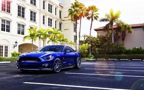Картинка Mustang, Ford, Muscle, Car, Blue, Front, Sun, Summer, Wheels, 2015, Velgen