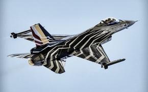 Картинка истребитель, F-16, Fighting Falcon, «Файтинг Фалкон»