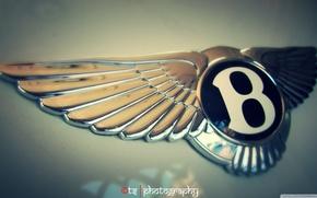 Картинка car, logo, bentley, goodlife