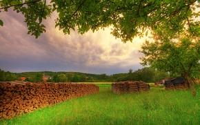 Картинка зелень, лес, лето, поляна, дрова, домики, поленица