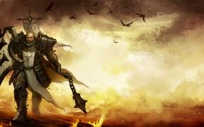 Картинка вороны, battlefield, щит, рыцарь, булава, поле боя, Diablo, shield, knight, крестоносец, crusader, цеп, crows, Reaper …