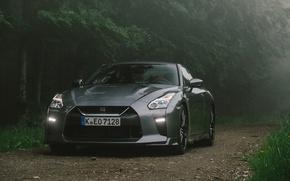 Картинка Nissan, GT-R, Gray, 2017