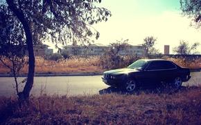Картинка машина, осень, трава, закат, дерево, bmw, бмв