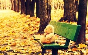 Картинка осень, листья, деревья, скамейка, фон, дерево, обои, настроения, игрушка, желтые, лавочка, мишка, лавка, wallpaper, листочки, …