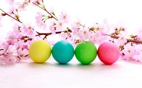 Картинка цветы, праздник, пасха, цветение, яички, вишневая веточка