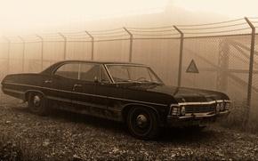 Обои знак, забор, 1967, sedan, supernatural, hardtop, Сhevrolet Impala, пешотка