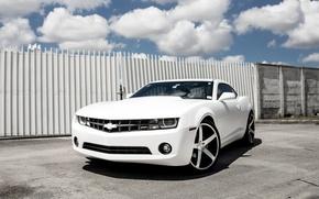 Картинка Chevrolet, Camaro, Wheels, Concavo