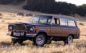 Картинка фон, внедорожник, Джип, передок, Jeep, Limited, 1982, Вагонер, Wagoneer