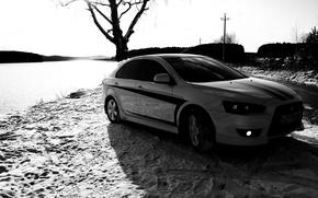 Обои Дерево, Следы, Mitsubishi, черно-белая, Lancer X10, Снег