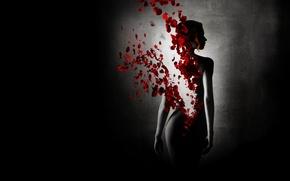 Обои Черный фон, растворение, девушка, перевоплощение, лепестки роз