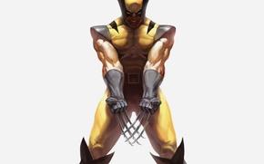 Картинка злость, Росомаха, Логан, люди икс, Wolverine, Marvel, x-men, Comics