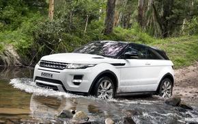 Картинка лес, белый, деревья, камни, купе, джип, динамик, Land Rover, range rover, coupe, передок, кроссовер, эвок, …