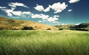 Картинка Природа, Красота, Green Valley, Зеленная Долина