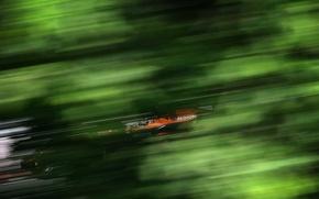 Обои зеленый, скорость, формула1, гонка