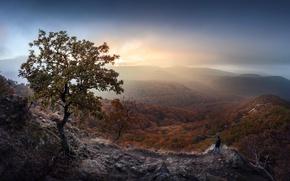 Картинка горы, туман, человек, утро