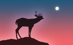 Картинка небо, обрыв, прыжок, луна, олень, рога, пропасть, силует, мгла