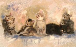 Картинка картина, разводы, акварель, котята, живопись, серые, милашки, мазки, смотрят, обои от lolita777