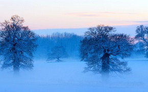 Обои панорама, небо, облака, дымка, зима