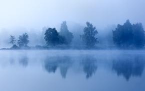 Картинка деревья, туман, озеро, утро, сумерки