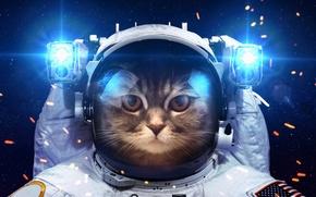 Картинка космонавт, скафандр, свет, юмор, космос, фонарики, кот