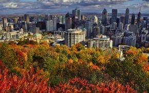 Картинка осень, облака, пейзаж, дома, Канада, Монреаль, солнечно, кусты, Montreal, возвышенность