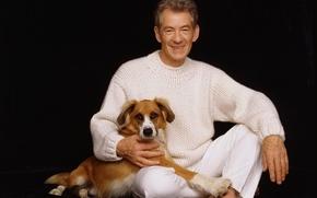 Картинка Ian McKellen, Сэр Иэн Мюррей Маккеллен, Иэн Маккеллен, британский актер, Sir Murray McKellen