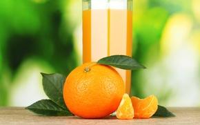 Картинка стакан, апельсин, сок, цитрус, мандарин