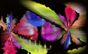 Картинка линии, фон, узор, цвет, пятно