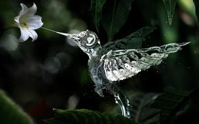 Картинка цветок, механизм, робот, колибри