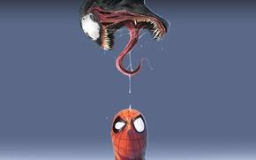 Обои spider-man, синий фон, Venom