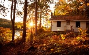 Картинка осень, лес, солнце, деревья, пейзаж, закат, вилла, дома, Природа, house, forest, Nature, архитектура, trees, landscape, ...
