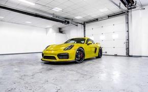 Картинка Porsche, white, cayman, room, GT4