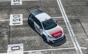 Картинка Пежо, Peugeot, 308, Total, Туринг