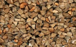 Картинка дерево, дрова, берёза