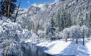 Обои калифорния, национальный парк йосемити, снег, зима