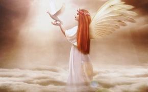 Картинка руки, крылья, ангел, лицо, профиль, волосы, голубь, девушка, длинные, птица, небо, фантастика, облака, Jennifer Gelinas