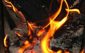 Картинка огонь, костер, дрова